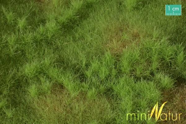 Auenwiese Größe: ca. 63x50 cm Frühling 1 : 87 Stück