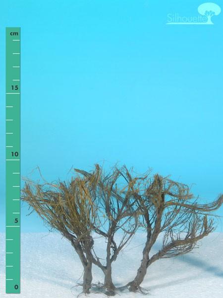 Büsche halbhoch/ High shrubs Kahl Größe: ca. 12 cm