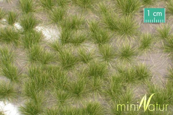 Grasbüschel lang / Long tufts Frühherbst Größe: ca. 42x15 cm Maßstab: 1:45