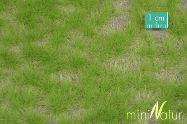 Grasbüschel lang / Long tufts Frühling Größe: ca. 42x15 cm Maßstab: 1:45