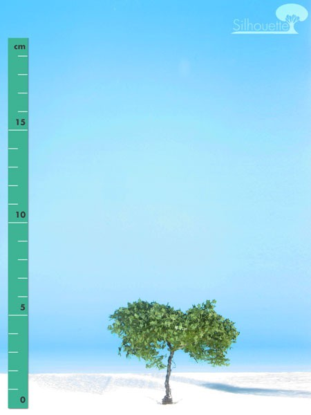 Ahorn/ Maple Sommer Größe: 0