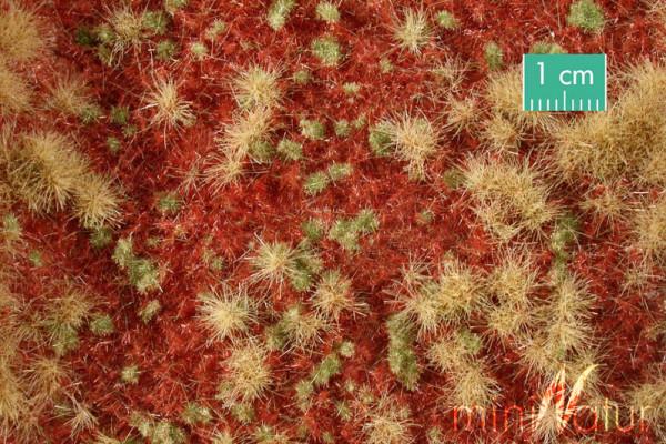 Waldboden bewachsen / Overgrown forest groundcover Spätherbst Größe: ca. 63x50 cm Maßstab: 1:45