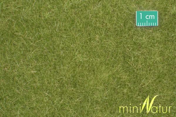 Rasen lang Größe: ca. 63x50 cm Frühherbst 1 : 87 Stück
