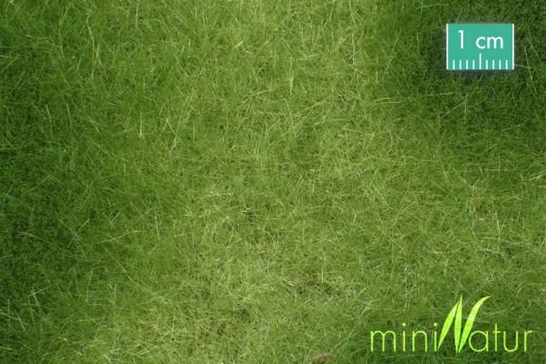 Sumpfwiese Größe: ca. 63x50 cm Frühling 1 : 87 Stück