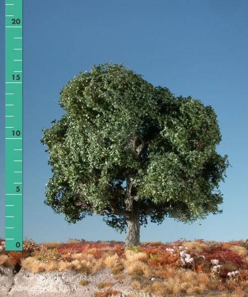 Eiche/ Oak Sommer Größe: ca. 47 cm