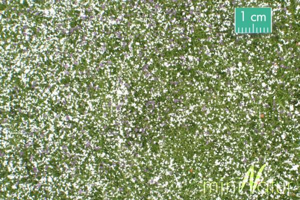Wiese mit Blüten/ Pasture with flowers Frühherbst Größe: ca. 31,5x25 cm Maßstab: 1:87