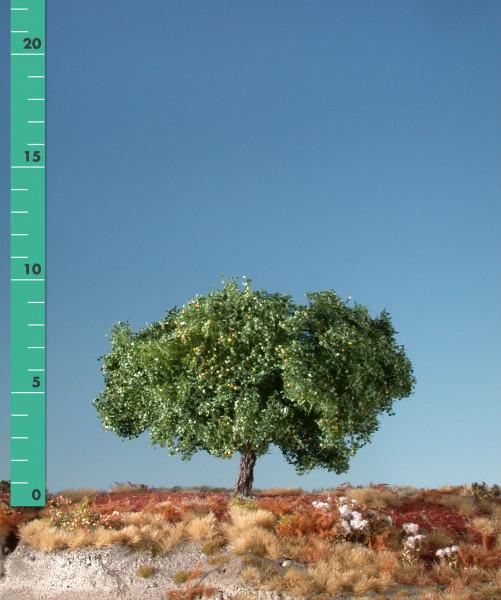 Apfelbaum/ Appletree Sommer Größe: ca. 19 cm