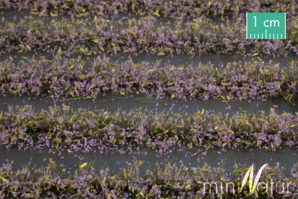 Blumenfeld-Streifen Größe: ca. 231 cm violett 1 : 87 Stück