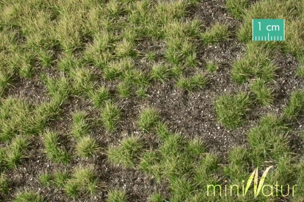 Erdboden bewachsen Overgrown dark ground Sommer Größe: ca. 63x50cm Maßstab: H0/0