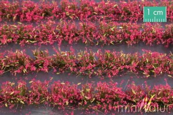 Blumenfeld-Streifen Größe: ca. 231 cm magenta 1 : 87 Stück