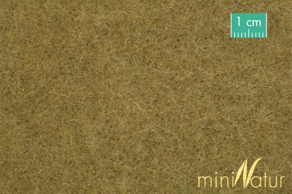Rasen lang Größe: ca. 63x50 cm Spätherbst 1 : 87 Stück
