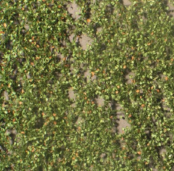 Buchenlaub / Beech foliage Frühherbst Größe: ca. 50x31,5 cm Maßstab: 1:87