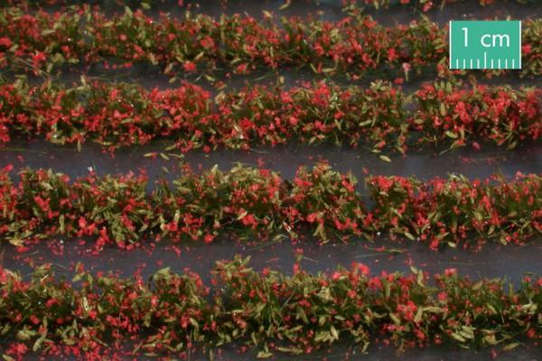 Blumenfeld-Streifen Größe: ca. 231 cm rot 1 : 87 Stück