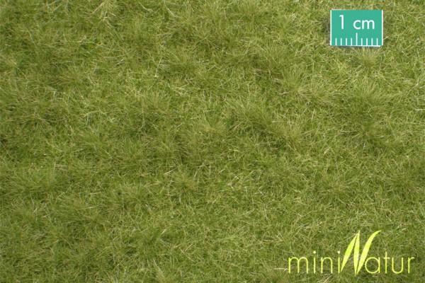 Viehweide /Cattle pasture Frühherbst Größe: ca. 63x50 cm Maßstab: 1:87