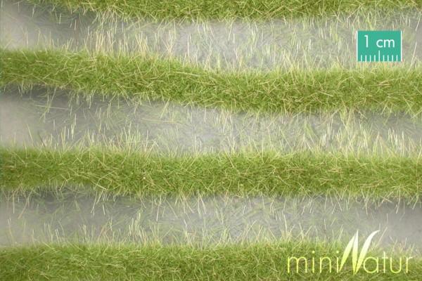 Karststreifen Größe: ca. 252 cm Frühling 1 : 45+ Stück