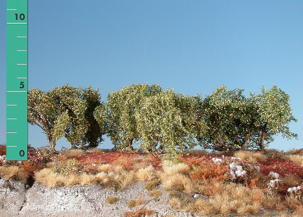 Büsche niedrig/ Low shrubs Frühherbst Größe: ca. 4 cm