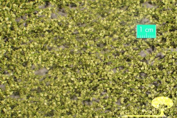 Birkenlaub / Birch foliage Frühling Größe: ca. 27x15 cm Maßstab: 1:45