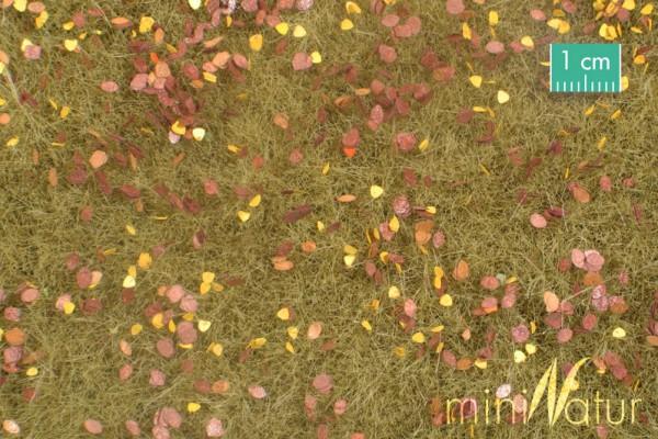Wiese mit Unkraut /Pasture with weeds Spätherbst Größe: ca. 50x31,5 cm Maßstab: 1:45