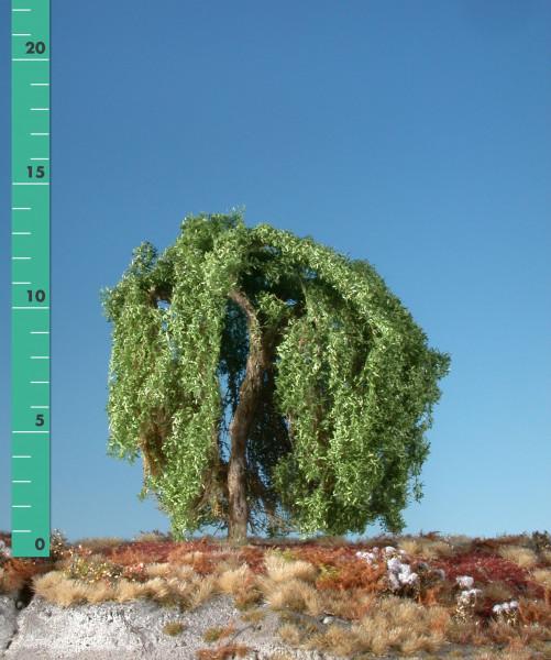 Trauerweide/ Weeping willow Sommer Größe: 2