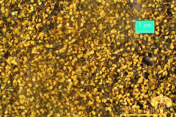 Birkenlaub / Birch foliage Spätherbst Größe: ca. 27x15 cm Maßstab: 1:45