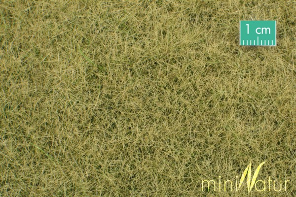 Wiese / Meadow Spätherbst Größe: ca. 31,5x25 cm Maßstab: 1:45
