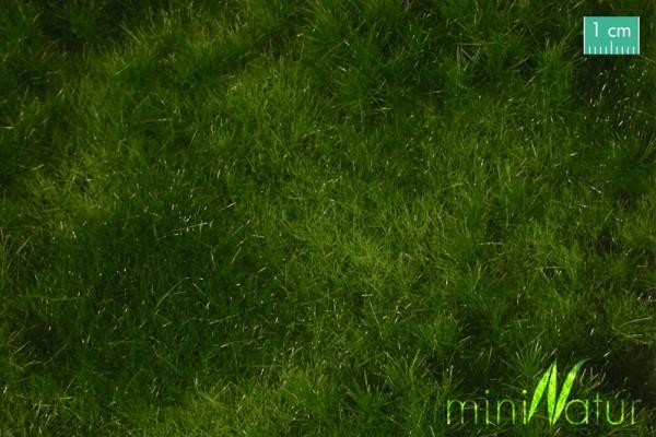 Auenwiese / Fertileplain meadow Sommer Größe: ca. 25x15,5 cm Maßstab: H0/0