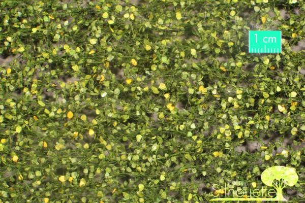 Birkenlaub / Birch foliage Frühherbst Größe: ca. 63x50 cm Maßstab: 1:45