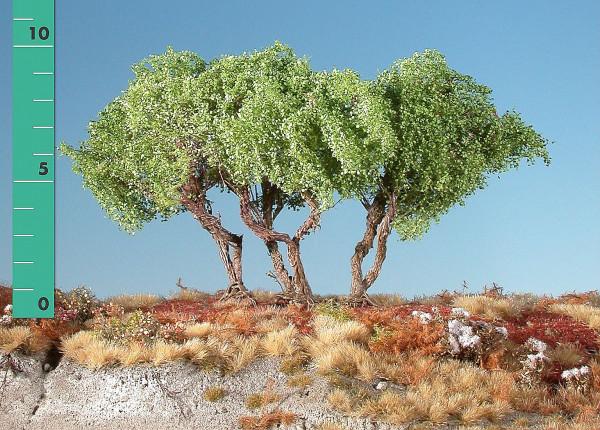 Büsche halbhoch/ High shrubs Frühling Größe: ca. 12 cm