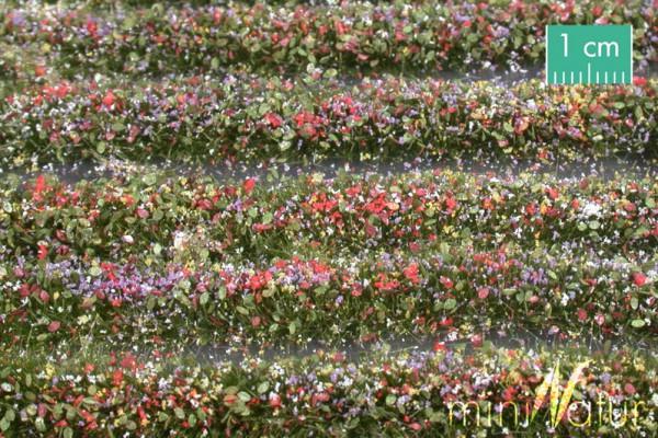 Blütenstreifen Größe: ca. 336 cm bunt 1 : 87 Stück