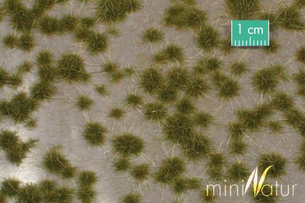Karstbüschel / Two coloured tufts Frühherbst Größe: ca. 42x15 cm Maßstab: 1:45