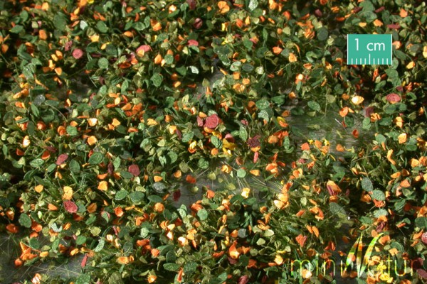 Unkrautbüschel / Weed tufts Frühherbst Größe: ca. 42x15 cm Maßstab: 1:45