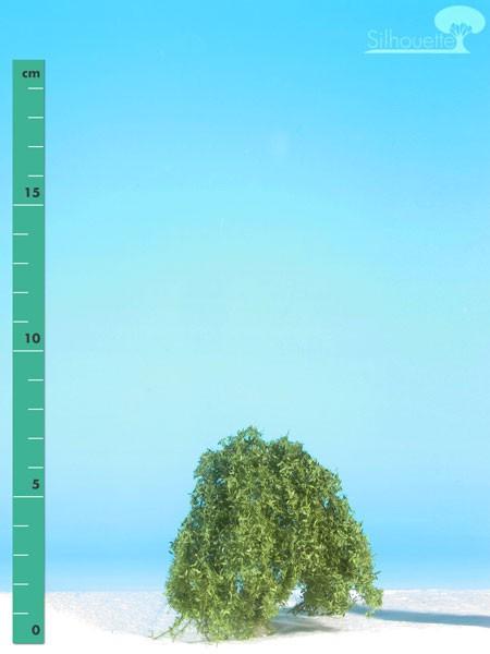 Trauerweide/ Weeping willow Sommer Größe: 0