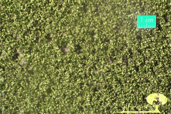Birkenlaub / Birch foliage Sommer Größe: ca. 63x50 cm Maßstab: 1:87