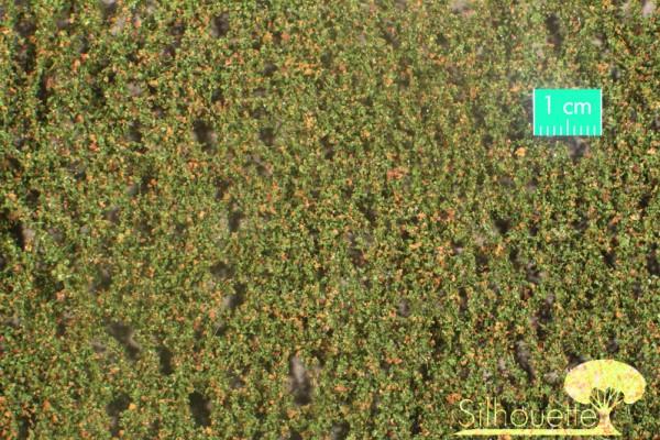 Buchenlaub / Beech foliage Frühherbst Größe: ca. 50x31,5 cm Maßstab: 1 : 160-220