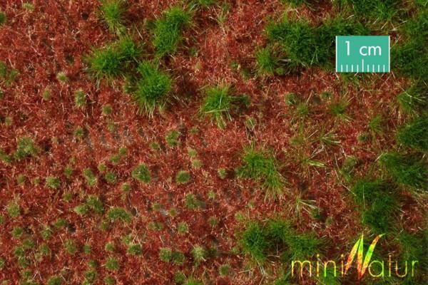 Waldboden bewachsen / Overgrown forest groundcover Sommer Größe: ca. 50x31,5 cm Maßstab: 1:87