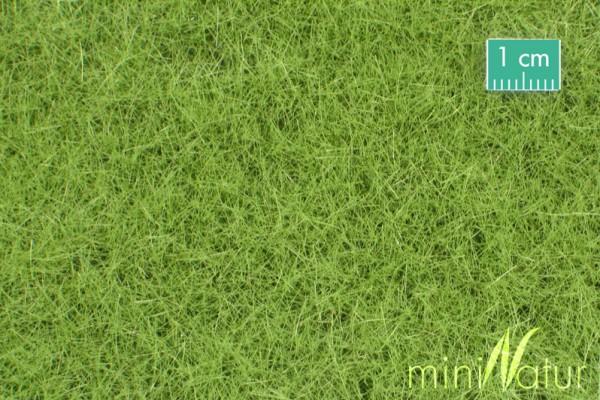 Wiese / Meadow Frühling Größe: ca. 31,5x25 cm Maßstab: 1:45