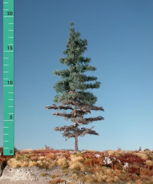 Wettertanne/ Weatheered nordic fir Sommer Größe: 3