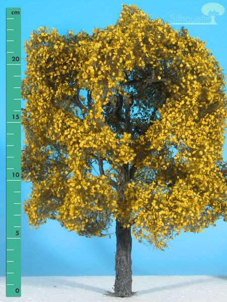 Ahorn (gelb) Größe: 3 Spätherbst 1 Stück
