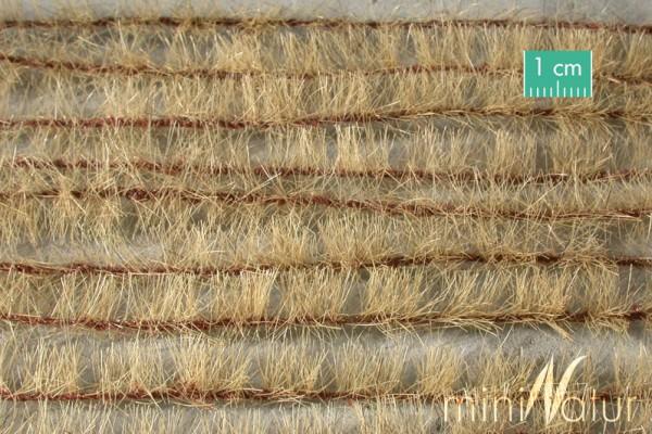 Agrarstreifen Größe: ca. 231 cm Spätherbst 1 : 45+ Stück