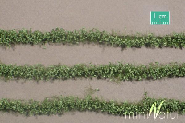 Agrarstreifen mit Blättern Größe: ca. 420 cm Sommer 1 : 87 Stück