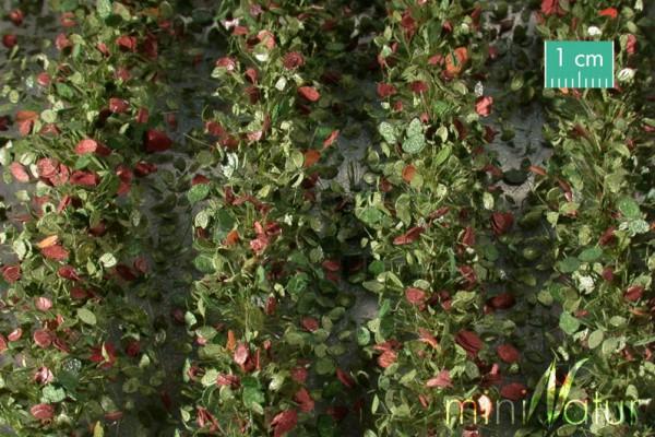 Agrarstreifen mit Blättern Frühherbst Größe: ca. 210 cm Maßstab: 1 : 45+