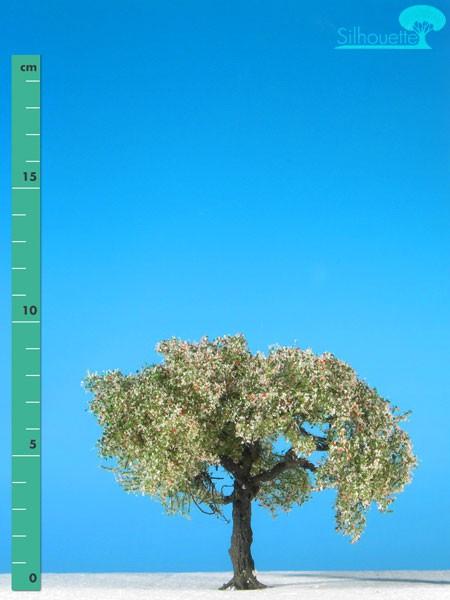 Apfelbaum Größe: 1 Frühling 1 Stück