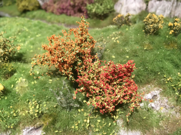 Sträucher-Sortiment / Shrubs range Blühend Größe: ca.4cm
