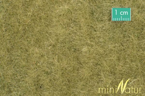 Wiese / Meadow Spätherbst Größe: ca. 31,5x25 cm Maßstab: 1:87