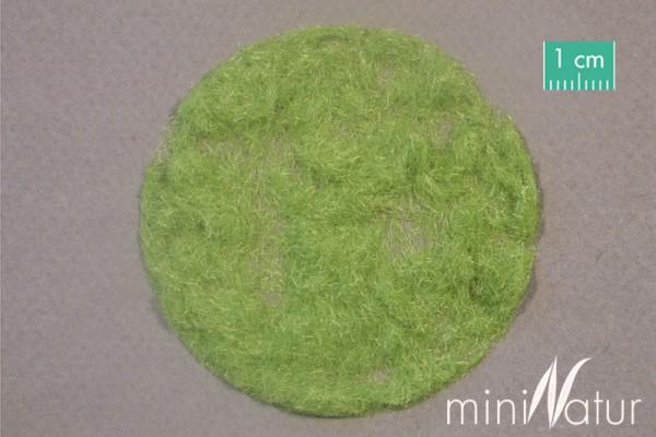 Gras-Flock 2 mm Frühling Größe: 250g