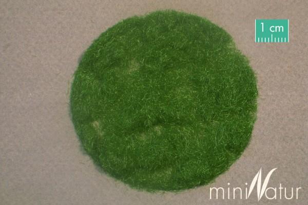 Gras-Flock 2 mm Sommer Größe: 100 g