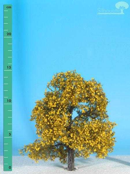 Ahorn (gelb) Größe: 1 Spätherbst 1 Stück