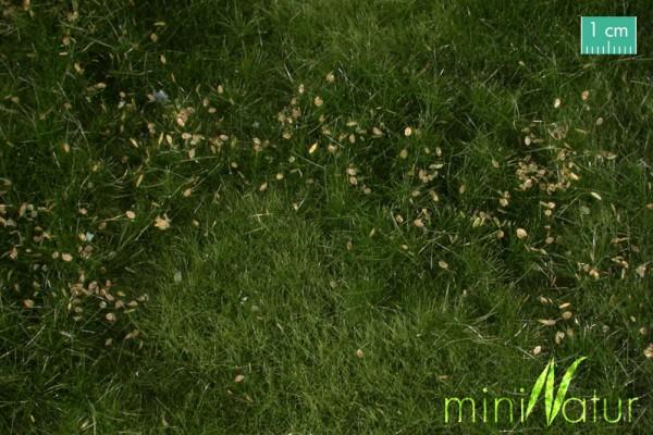 Auenwiese mit Unkraut Fertile plain meadow with weeds Sommer Größe: ca. 25x15,5 cm Maßstab: H0/0