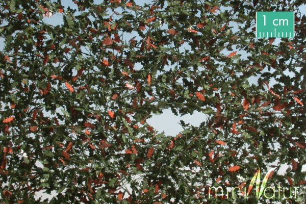 Eichenlaub / Oak foliage Frühherbst Größe: ca. 50x31,5 cm Maßstab: H0/0