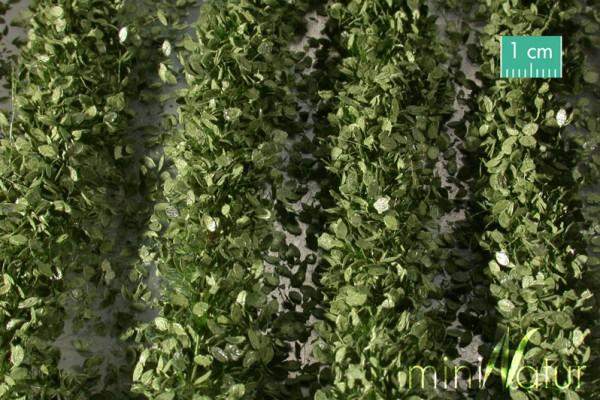 Agrarstreifen mit Blättern Größe: ca. 231 cm Sommer 1 : 45+ Stück